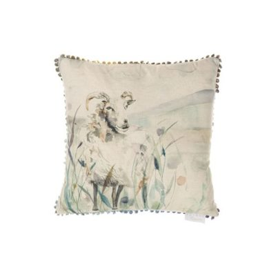 Graze Cushion