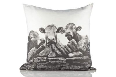 Cushion Cover by Kelly Hood