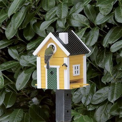Yellow bird box and feeder
